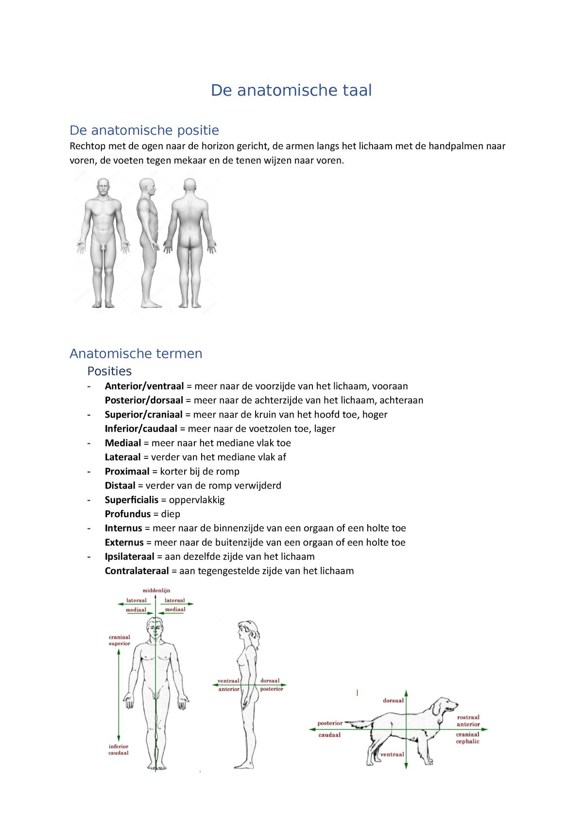 Glass trageri dureri peste tot simptomele corpului Lilea