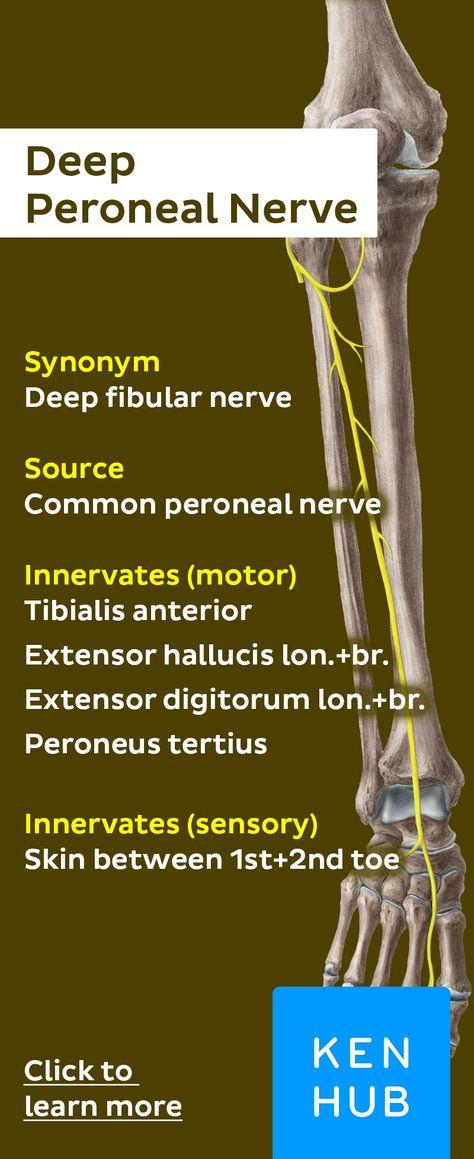 tratamentul cu clic pe genunchi