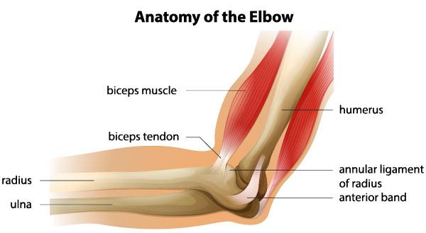 durere în articulația cotului și braț unguente din entorse ale articulației cotului