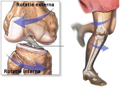 recuperare după ruperea ligamentului lateral al articulației genunchiului dureri articulare la brațe și picioare seara