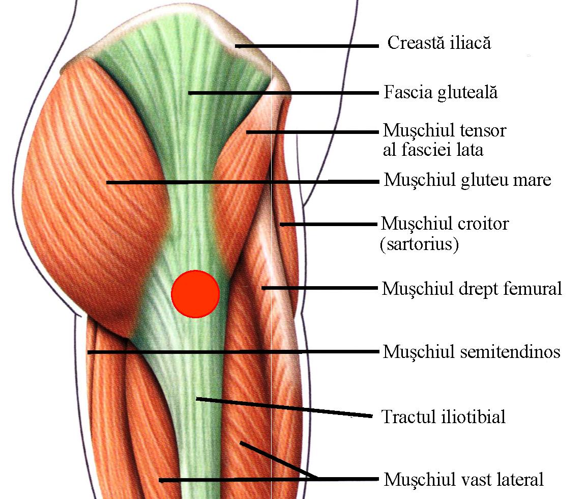 dureri articulare cu flexia degetelor