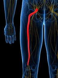 Durerea lombara joasa | Hipocrat