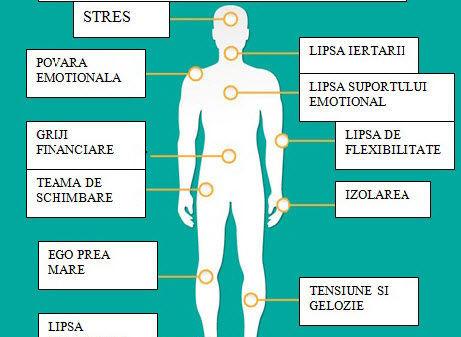 Claudia Dumitru, psiholog clinician: Ştiai că durerile fizice pot fi cauzate şi de emoţii?
