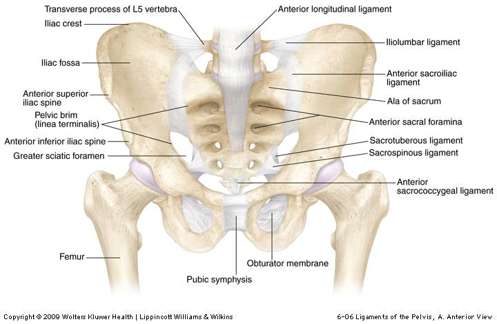 simptomele osteochondrozei articulațiilor articulațiile și mușchii doare.