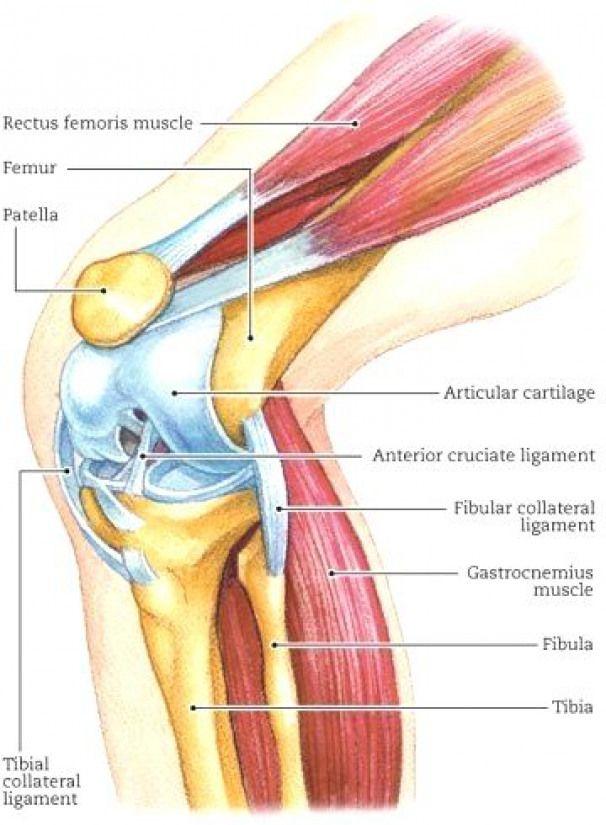 durere metastaze articulația șoldului