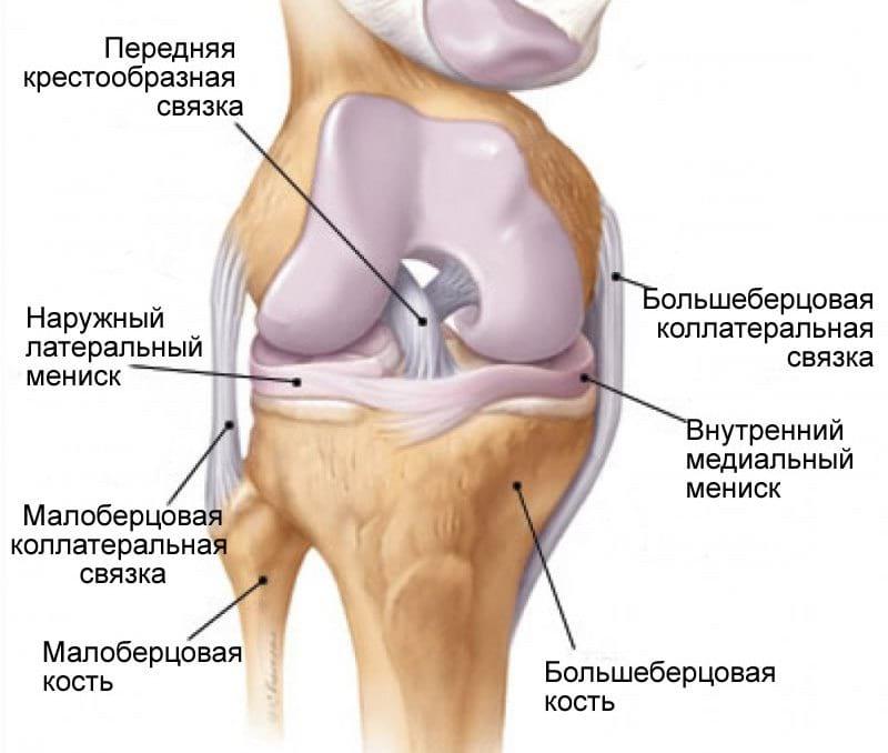 Разрыв передней связки лечения коленного сустава, Artroza tratament Ayurveda