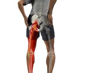 articulațiile și mușchii piciorului doare