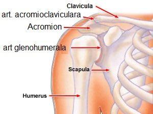 artrita dupa fractura articulatiei umarului
