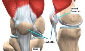 kurpatov înseamnă osteochondroză regim de tratament al durerii articulare