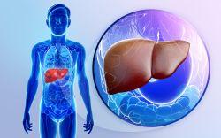 Durerile de ficat: cauze si remedii, Boli articulare și ficat
