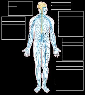 artroza post-traumatică tratamentul acesteia
