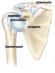 Durere în articulația umărului cu un suspin - baremi.ro