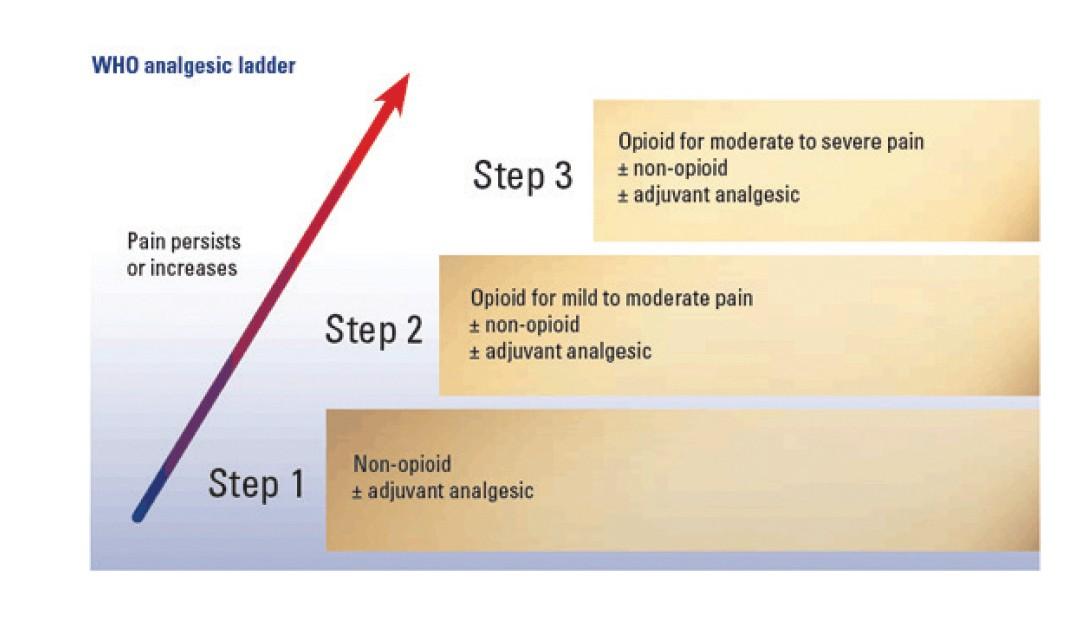 evaluarea durerii articulare