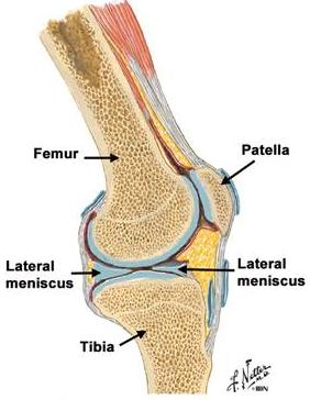 gradul de tratament al leziunilor genunchiului 2