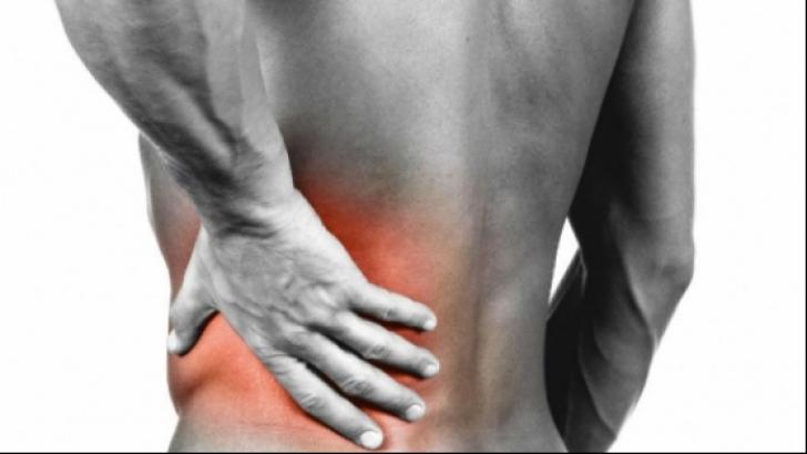 Insuficienta renala (boala cronica de rinichi) Cum functioneaza rinichii si intreg aparatul urinar?