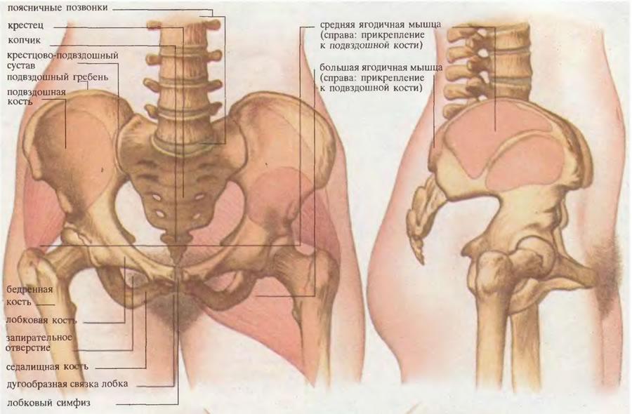 tratamentul durerii articulare sacroiliace răsuciți picioarele durerii în genunchi și articulații