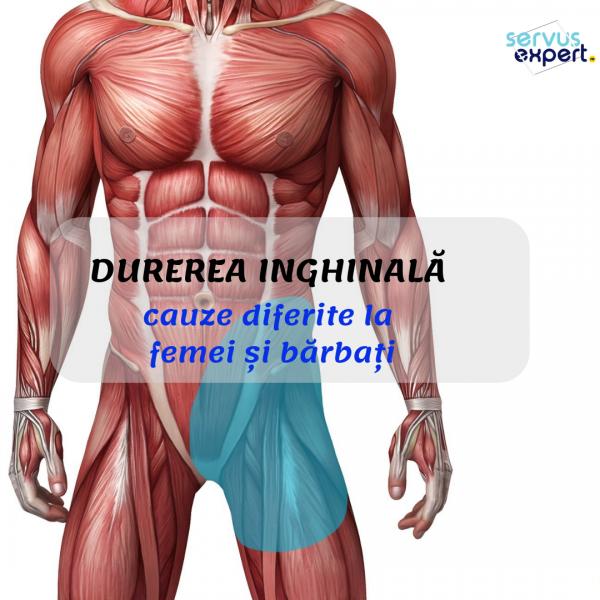 Dureri musculare la nivelul articulațiilor abdomenului