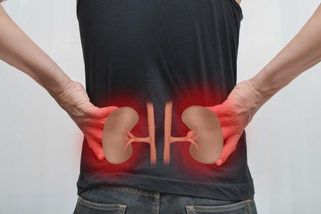 Articulară insuficiență renală durere