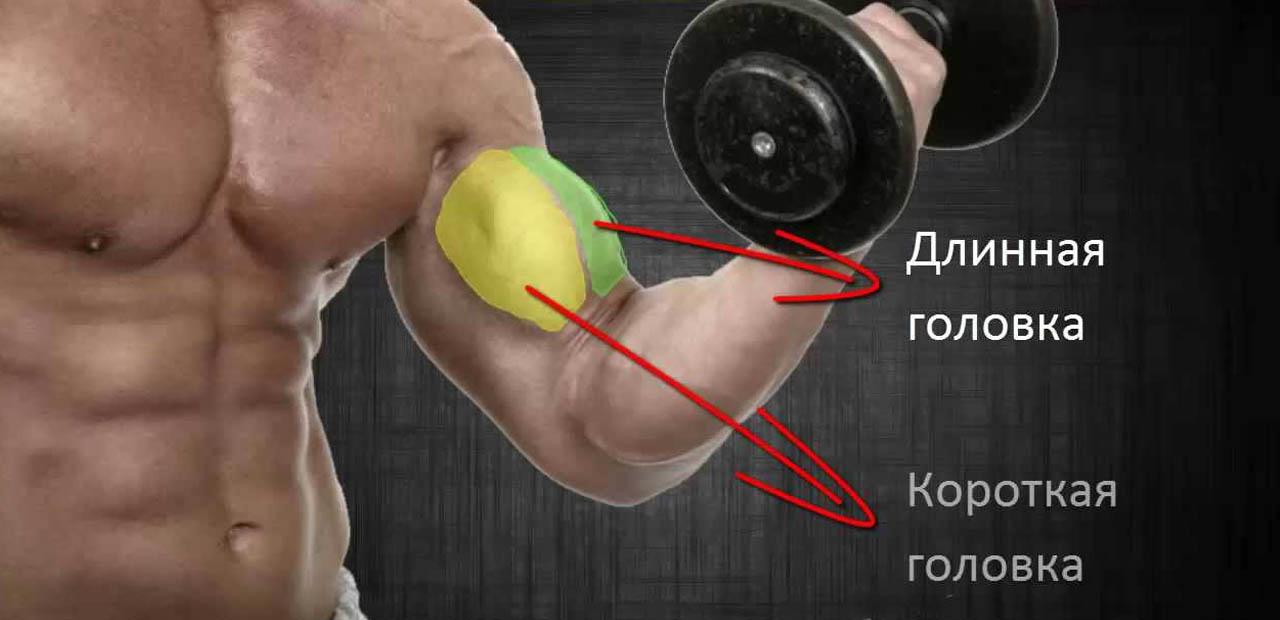 artrita unguentului articulației genunchiului