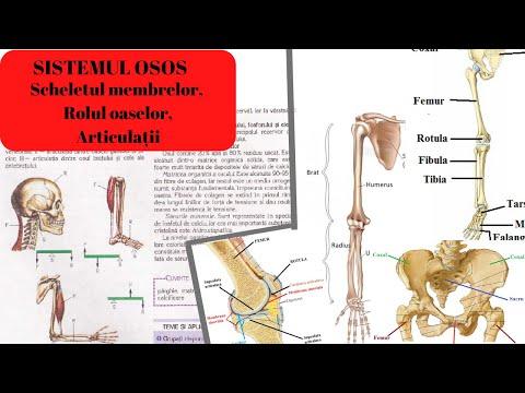 inflamația articulară a tratamentului picioarelor din cauza a ceea ce articulațiile pot răni