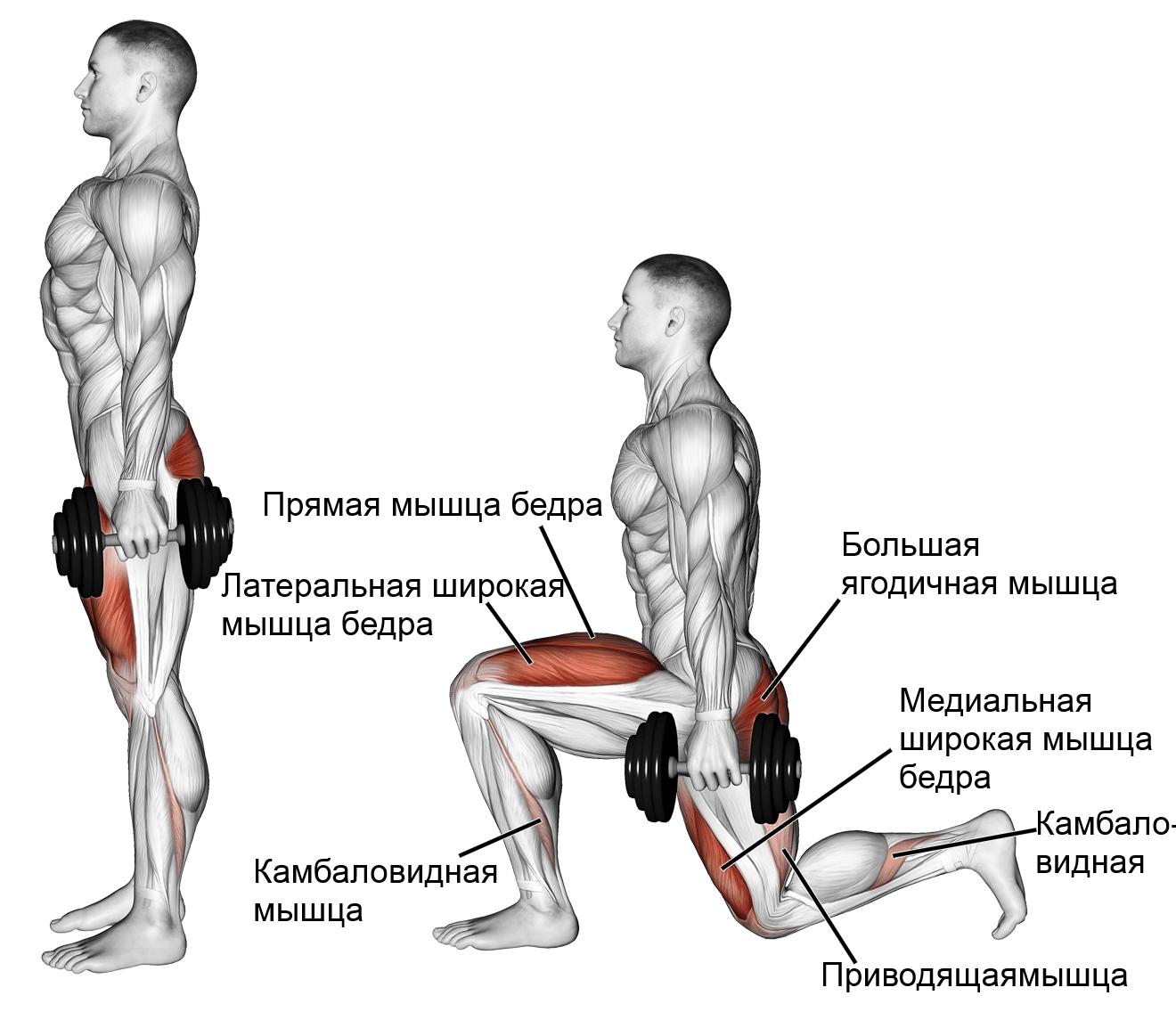 de ce se strâng articulațiile genunchiului leziuni articulare frecvente