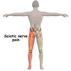 anestezie dureri musculare și articulare durere la gleznă după o cădere